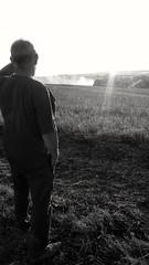 Les Moissons du Ciel : Colère Paysanne - Hors Collection (théorieartistiquedusoleilhabité) Tags: moissoneuse moissons lesmoisonsduciel moissoneusebateuse paysan paysanne champs blé campagne foin cereales recolte tracteur fumée horizon noiretblanc