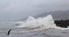 The Grey River Bar (b.landscape) Tags: greymouth blaketown cobden greybar greyriver waves tiphead tasmansea westcoast southisland newzealand