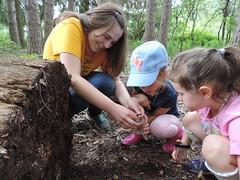 Crawlers and Sneaks 7/18-21/17 (Audubon Community Nature Center) Tags: underworld slug snail worm millipede log dead forest cit intern kids camp day promo
