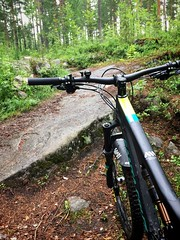 Wet & Slippery Ride 4 (pjen) Tags: nordic boreal maastopyörä pike 275 650b kashima trail bicycle bike 2x11 outdoor vehicle 5010 5010cc 50to01 summer santacruz mtb finland nature forest carbon fullsuspension wet enduro hiilikuitu