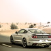 "2017_ford_mustang_california_special_review_dubai_carbonoctane_11 • <a style=""font-size:0.8em;"" href=""https://www.flickr.com/photos/78941564@N03/35868395270/"" target=""_blank"">View on Flickr</a>"