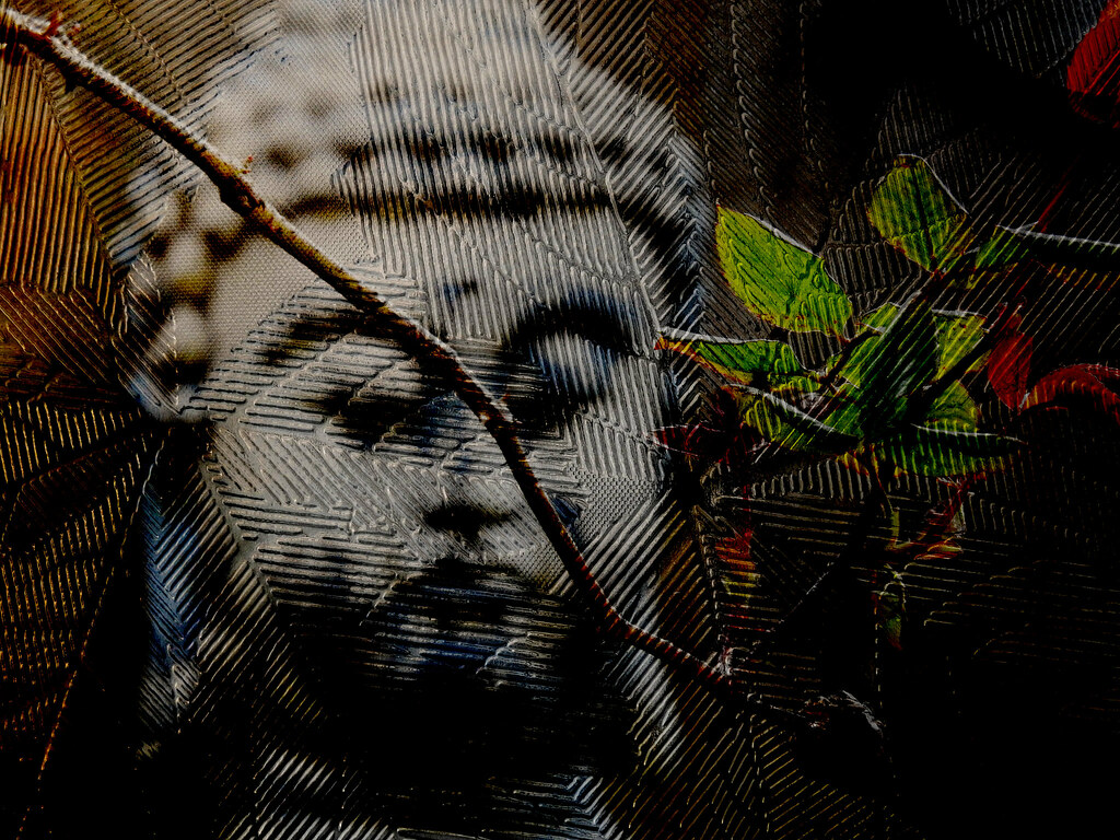Quotes Buddha 1 By C Harnish Via Flickr: The World's Best Photos Of Buddha
