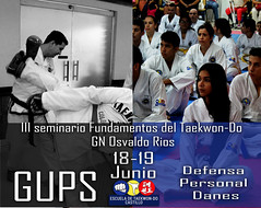 Seminario Fundamentos de Taekwon-Do