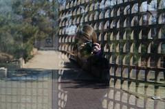 Self Reflection (hannahpaulk) Tags: self reflection dc sculpture garden sweater portrait behind camera