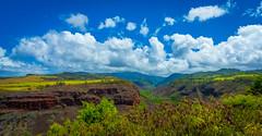 Canyon Rd Look out point (X77_5771-1) (Eric SF) Tags: lookoutpoint waimeacanyonstatepark waimea kauai hawaii