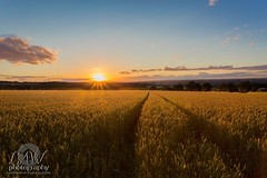 Woolley sunset (law-photography2014) Tags: canon1740l canon6d farmland sunset wakefield woolley