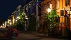 Colorful Night (JTc (Jari)) Tags: jtc suomi finland naantali night street alley lamp post light house flower
