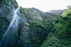 Waterfall Na Pali Coast Kauai Hawaii (Oliver Raatz) Tags: jungle colors inhalt hawaii kauai nature