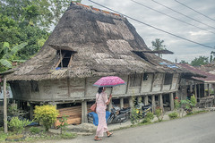 Sunday morning in a Nias village (Hannes Rada) Tags: indonesia nias island traditional house