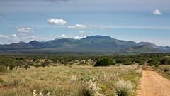 Tsavo West MARK III-0659 (ovg2012) Tags: kenia kenya tsavo tsavowestnationalpark