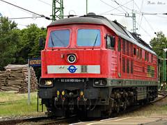 DB Schenker Romania 651 004 (boti_marton) Tags: db dbcargo dbcargoromania 651 class651 ludmilla locomotive diesel keszthely hungary europa trainstation panasoniclumixdmclz20