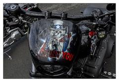 I want you (Francis =Photography=) Tags: europa europe france grandest lorraine moselle moto motorbike motorrad harleydavidson