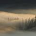 Misty morning (zbyhru) Tags: