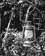 Old Lighting (Swifetmom2016) Tags: lantern light old wick kerosene lamp blackandwhite