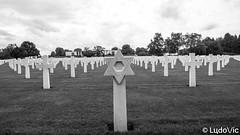Cimetière américain de Henri-Chapelle. 05 (Lцdо\/іс) Tags: cimetière henrichapelle world belgium america wwii lцdоіс belgique memory américain cimentary american