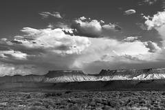 20170712-20170712-_DSC4850_ (michaelleejackson) Tags: zion nationalpark utah