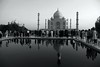 The Taj Mahal. Tourists and reflections (Heaven`s Gate (John)) Tags: tajmahal india reflection water pool tourists people blackandwhite black white bw worldheritagesite history heritage vacation icon art architecture religion johndalkin heavensgatejohn unesco 10faves 25faves