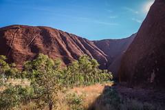 Uluru - Mutitjulu Waterhole-13