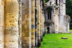 Netley Abbey 30 June 2017-0062.jpg (JamesPDeans.co.uk) Tags: england church gb greatbritain prints for sale abbey englishheritage religion unitedkingdom digital downloads licence man who has everything britain hampshire wwwjamespdeanscouk history uk ruins landscapeforwalls europe places james p deans photography digitaldownloadsforlicence jamespdeansphotography printsforsale forthemanwhohaseverything