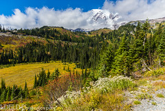 NT3.0057-MRNP160925_48769 (LDELD) Tags: mountrainier mountrainiernationalpark fall roadtoparadise washington paradisevalley mountain clouds