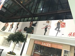 Holiday Graphics for Broadway Mall Client H&M (SirSpeedyPlainview) Tags: sir speedy plainview broadway commons mall sirspeedy sirspeedyplainview new york ny nyc long island li lic hicksville self adhesive vinyl wall decor decal wrap wraps scissor lift sky jack banner banners