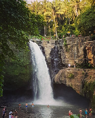 If only I could swim in this gorgeous nature's pool everyday! #bali #waterfall #ubud (Calysta_Hannah) Tags: ubud waterfall bali
