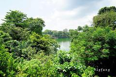 41 (樂活的大方) Tags: 20170724sb 新加坡動物園 river safari