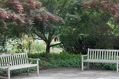 Brookside Gardens (karma (Karen)) Tags: wheaton maryland montgomeryco brooksidegardens trees bushes flowers benches hbm