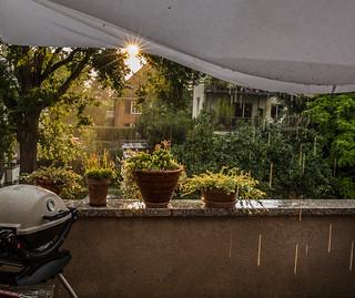 Summer Rain | Frankfurt