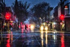 Rain runner (Ian@NZFlickr) Tags: rain storm pedestrian red light george st dunedin otago nz