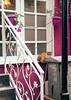 garfield :)) (elifkrky) Tags: cat big sleepyhead lazy pink
