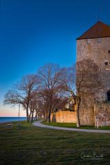 L'est face à l'ouest/East facing West/Öster mot väster (Elf-8) Tags: sweden gotland visby island balticsea österjön medieval fortress wall stone shore coast sunset path