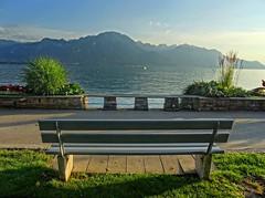 Lac Léman (Manon Ridet) Tags: suisse montreux france hautesavoie rhônealpes montagne mountain été lac léman banc nature paysage