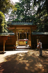 DP0Q0735 (chihiro2014) Tags: kyuuchuu ibarakiken 日本 jp