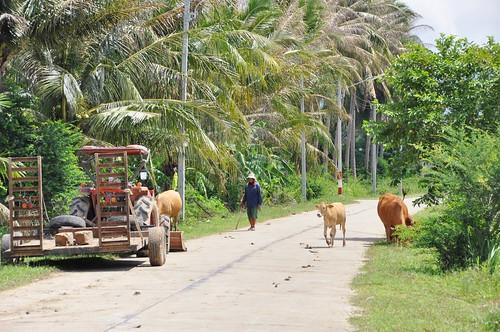 parc national sam roi yot - thailande 53