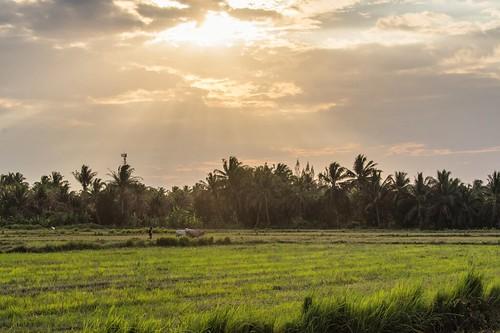 parc national sam roi yot - thailande 22
