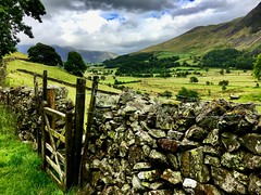 Lake District (heathernewman) Tags: walls valley moor hill purple heather landscape lakedistrictnationalpark nationalpark unesco lakedistrict