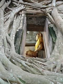 samut songkhram - thailande 4