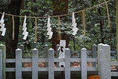 DP3Q2402 (chihiro2014) Tags: kyuuchuu ibarakiken 日本 jp