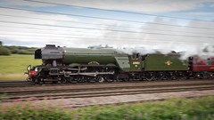Flying Scotsman (hanley27) Tags: flyingscotsman askhambar canon1740mm l f4 steam locomotive thewaverley panning