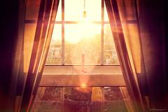 Orange (pm69photography.uk) Tags: sun sunlight window flare fuji fujinon fujifilm 56mm12apd xt2 red bokeh devon exeter