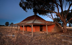 Not So Empty After All (Darren Schiller) Tags: abandoned australia architecture building corrugatediron cat derelict disused decaying farming deserted dilapidated dusk empty evening farmhouse rural rustic ruins rusty newsouthwales tomingley