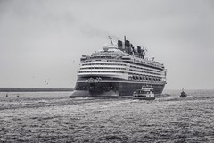 Disney ship leaving the north east (Millerc1980) Tags: northeast southshields disneyship sea nauticalvessel water sky day outdoors architecture nature builtstructure waterfront transportation nopeople buildingexterior clearsky horizonoverwater beautyinnature blackandwhitephotography eyeembestshotsblackwhite eyeembestshots eyeemgallery disney blackandwhite eyeem