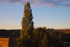 Dusky Shadows (choitowers) Tags: p26 shadows glossop dusk