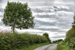Stormy Skies (jamesromanl17) Tags: tree nature landscape outdoors sky cloud summer road rural season scenic clouds cloudscape cloudy skies canon eos 5d markiii cheshire england britain countryside trees landscapes green