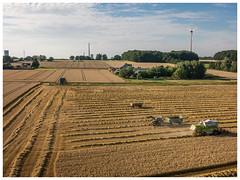 Grain harvesting (Peter L.98) Tags: kap flare minimalrig canons110 dortmund felder getreide mähdrescher natur pendel traktor