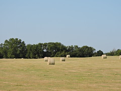 Bales (Andrew Penney Photography) Tags: random construction projects work