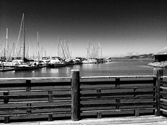 Arty Fence Shot (melystu) Tags: fence sailboats masts linear lines effect noir iphone emeryville harbor marina waterfront urban city bay ca bayarea