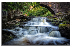 Under the Bridge. (peterwilson71) Tags: bridge falls river stream trees leaves shade flow rocks cascade yorkshire beauiful moss green