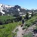 Mt Rose summit hike